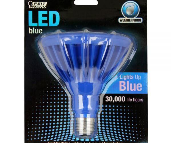 Blue-PAR38-LED